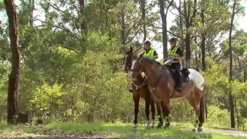 The search for Elisa Curry has entered its fourth day. (9NEWS)