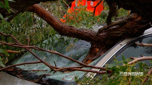 Cars were damaged during the wild weather. (9NEWS)