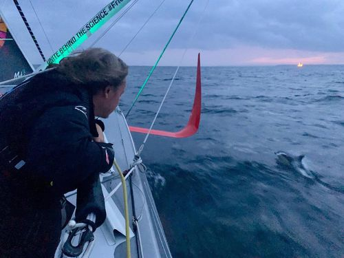 Thunberg watches a doplhin swimming alongside the racing boat Malizia II in the Atlantic Ocean.