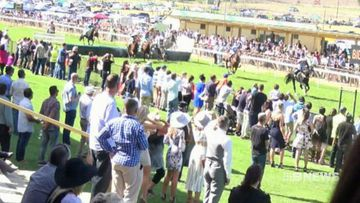 Jumps racing labelled barbaric after the death of a horse