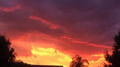 A striking sunset in Quakers Hill. (Rosie Cambey)
