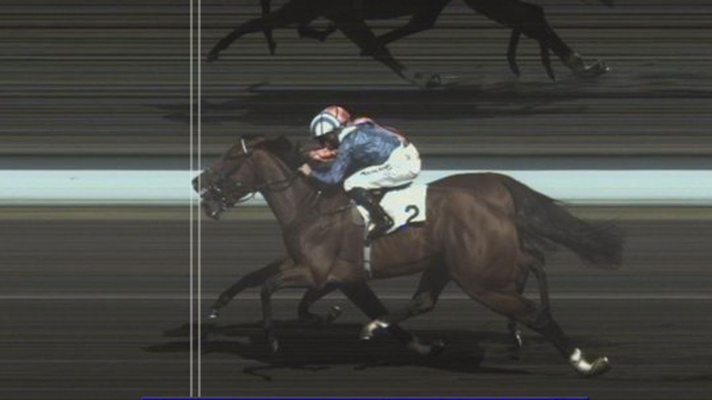 'Optical illusion' photo finish in horserace causes confusion