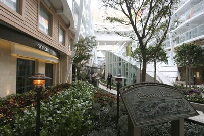 The ship features seven distinct neighbourhoods all said to have a unique vibe to them.