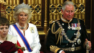 Prince Charles at the Opening of Parliament, 2015.