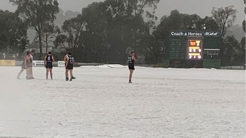Football postponed as heavy hail blankets Melbourne, snow falling on alps