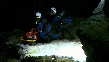 A man has been rescued after falling from a cliff at Bondi.