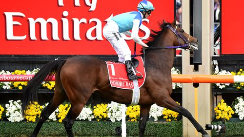 Admire Ratki pictured coming last in the Melbourne Cup.