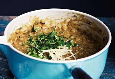 Bengal tiger lentil curry
