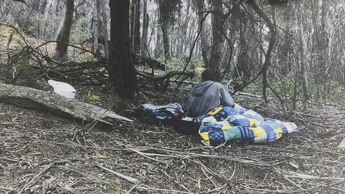 A six-year-old missing boy and his mother, accused of taking him from his school's playground, were found camping in the Tallaganda National Park.