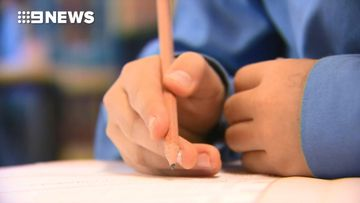 NSW teacher slams NAPLAN as Education Minister calls for tests to be scrapped