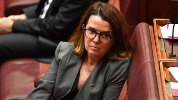 Social Services Minister Anne Ruston has said the old-age pension was 'generous'.
