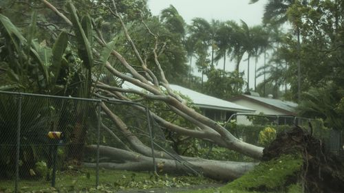 Tropical Cyclone Marcus brought down trees and power lines and blocked roads as it crossed Darwin. Picture: AAP.