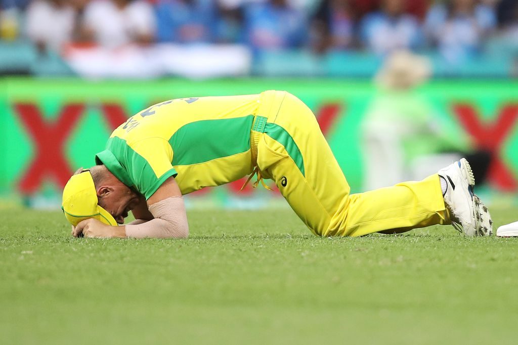 IND vs AUS 2020: D'Arcy Short called in after David Warner ruled out of the ODI and T20 series with a groin injury.