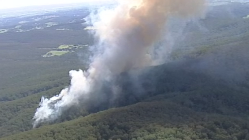 The fire is burning in Gembrook. (9NEWS)