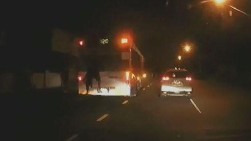 'Stupid, dangerous' bus surfing caught on dashcam