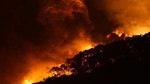 Mr Andrews says the state government will stand by those affected by the fire. (9News)