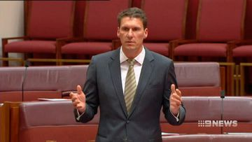 VIDEO: Cory Bernardi reportedly planning right-wing split from Liberal Party