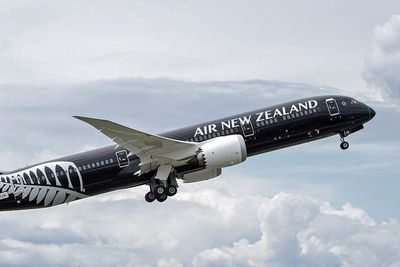 <strong>17. Air New Zealand</strong>