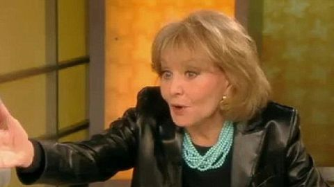 'Do you like it when he is rough?' Barbara Walters, 82, shocks The View with S and M talk