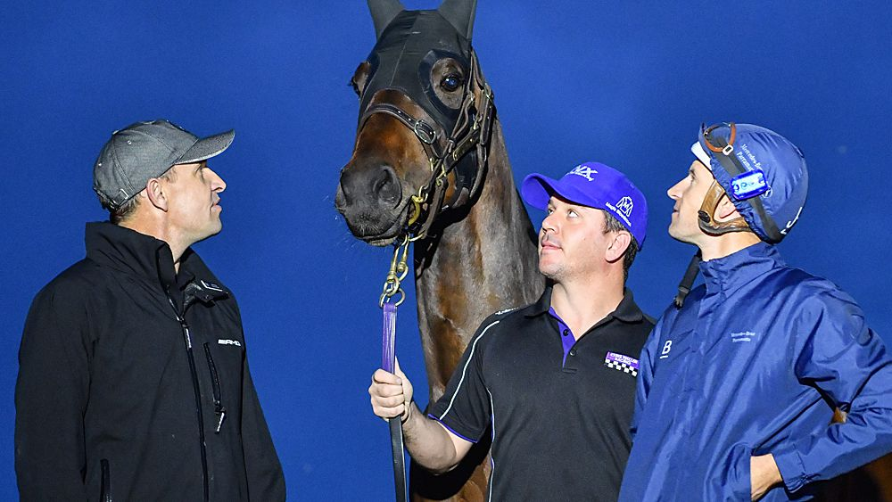 Winx prepares Group One Turnbull Stakes at Flemington