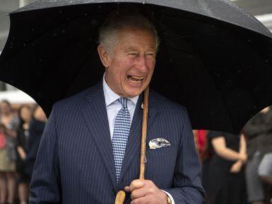Prince Charles in New Zealand, November 2019.