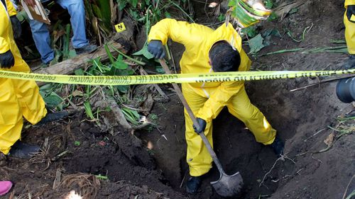 In this Jan. 15, 2018 photo, released by the General Prosecutor of Nayarit, a man digs up a clandestine grave in Xalisco, Nayarit state, Mexico. Sniffer dogs led authorities to the grisly discovery of three clandestine graves containing at least 33 bodies in a sugarcane field. Some of the bodies may have been hacked up before being tossed into the pits, and authorities believe they were probably involved in the drug trade.