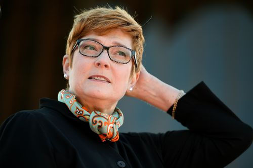 Defence Minister Marise Payne said the new laws will permit the ADF to complement state and territory authorities on land, at sea and in the air. Picture: AAP.