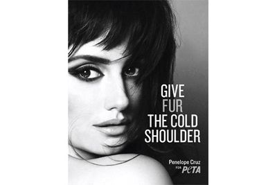 Penelope's 2012 campaign gives fur the cold shoulder...and this is all we need to get hot!