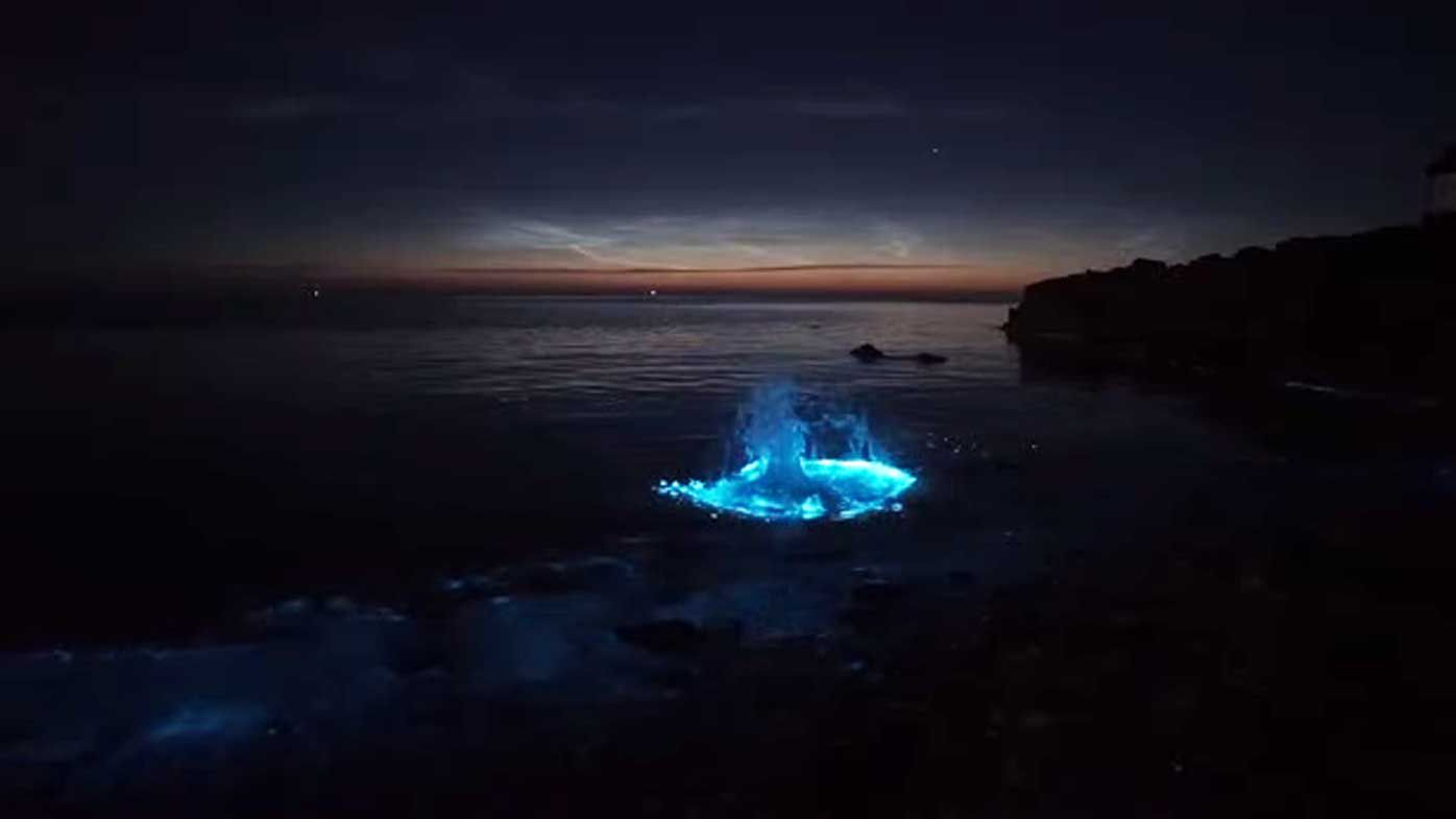 Photographer Kris Williams glowing plankton in Wales