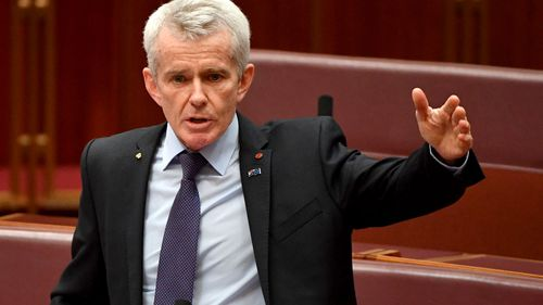18C protects Muslim pedophiles and extremists, One Nation senator Malcolm Roberts claims