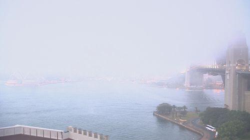 Sydney fog June 11