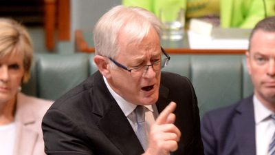 "Trade Minister Andrew Robb has backed Mr Abbott and says the leadership spill was an ""ambush""."