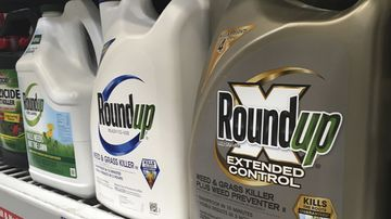 Containers of Roundup are displayed on a store shelf.