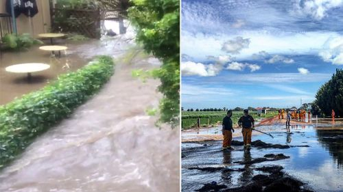 SES crews have responded to calls for help amid flooding in SA. (9NEWS)