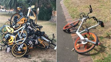 Shocking cost of share bikes