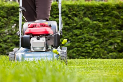 <strong>Mowing the lawn (35 minutes)</strong>