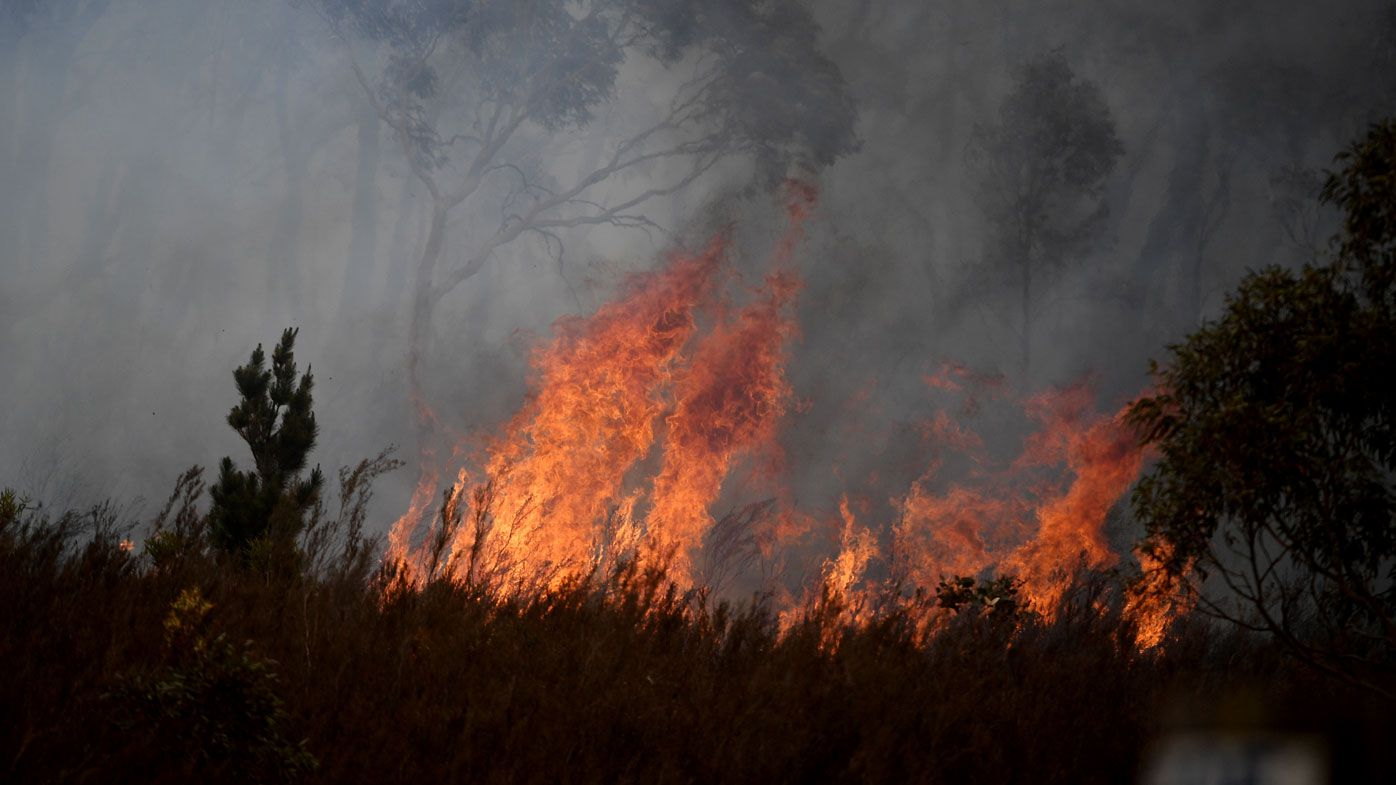 Fires force relocation of Canberra International