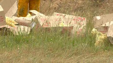 Popcorn chicken strewn across highway after crash