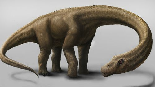 'It would have feared nothing': fossils of massive 60 tonne dinosaur discovered in Argentina
