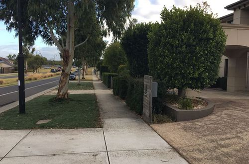Neighbours heard screams after the dog attack at the Berwick, Melbourne, home about 8pm Sunday, March 4. (9NEWS)