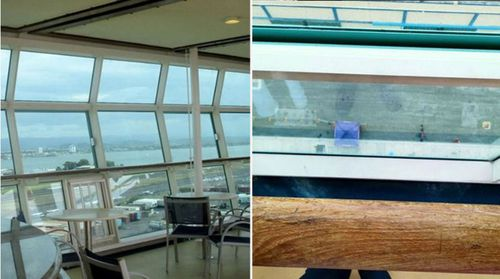Chloe Wiegand fell from an open window on the 11th floor of the cruise ship.