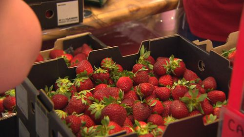 Some bought strawberries by the box.