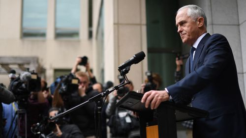 Mr Turnbull is set to quit the parliament on Friday.