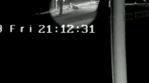 CCTV footage showed the two brothers cross the road towards the water at the Woy Woy Ferry Wharf.
