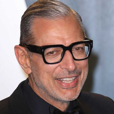 Jeff Goldblum as Dr Ian Malcolm: Now