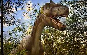 T-rex had a teenage growth spurt - but not all dinosaurs did