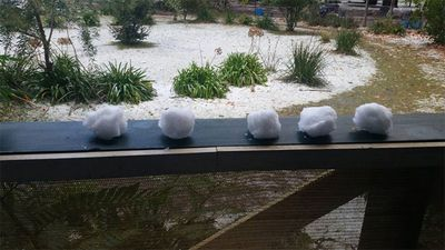 Time for a snowball fight in Wingello, NSW? (Photo: Kerry Lawrence)