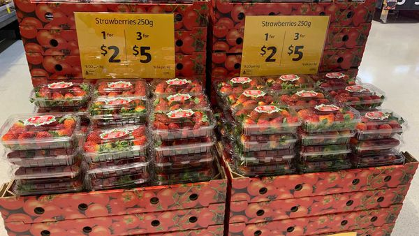 Strawberry punnets on sale, 3 for $5