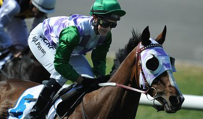 <p>Prince of Penzance (NZ)</p><p>Jockey Michelle Payne</p><p>Trainer Darren Weir</p><p>Barrier 1</p>
