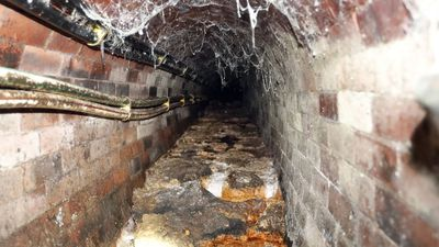 London fatberg to go on museum display